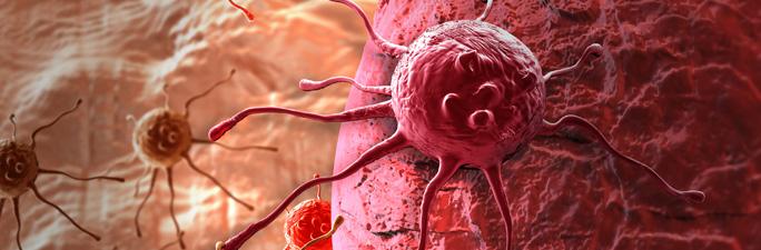 tipos_de_cancer